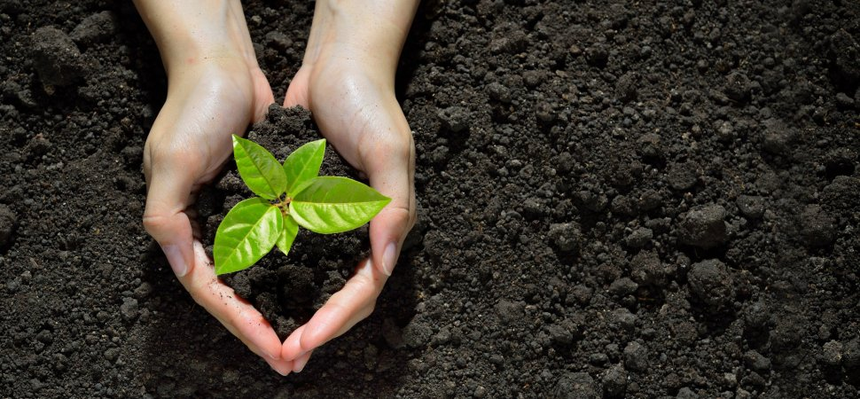 Why Saving Our Home Planet by Board Room Will Help Your Company Grow?